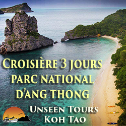 cout appel thailande france